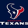 Houston Texans by Mitro Dente