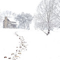 How Many Snows? by Jim Dollar