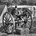Howitzer Battle Of Honey Springs V4 by John Straton