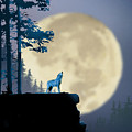 Howling Coyote by Paul Sachtleben