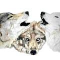 Howling by Debra Sandstrom