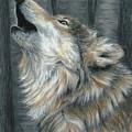Howling Wolf by Carla Kurt