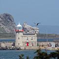 Howth Lighthouse 0005 by Carol Ann Thomas