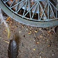 Hubcap And Feather by Amanda Wimsatt