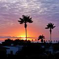 Hued Sunset  by Julieanne Case