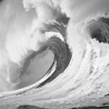 Huge Curling Wave - Bw by Ali ONeal - Printscapes