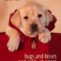 Hugs And Kisses by Lori Deiter
