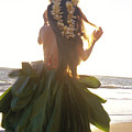 Hula At Sunrise by Tomas del Amo - Printscapes