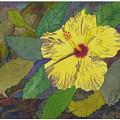 Hula Girl Hibiscus by Robert Bates