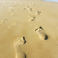 Human Footsteps In The Sand by Shay Levy