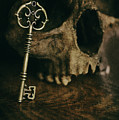 Human Skull With Vintage Key by Lee Avison