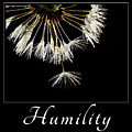 Humility by Mary Jo Allen