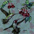 Hummers And Fuchsia by Shirley Heyn