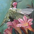 Humming Bird Anna by Mona Davis