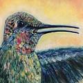 Humming Bird by Charleena Treanor