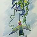 Hummingbird 1 by Ethel Dixon