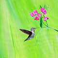 Hummingbird And Sweet Peas by Kirsten Sneath