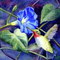 Hummingbird Delight by Bonnie Rinier