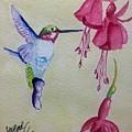 Hummingbird I by Sharon Reed