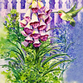 Hummingbird In Foxgloves  by Lois Mountz