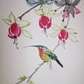 Hummingbird by Leo Gordon