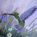 Hummingbird by Rich Fotia