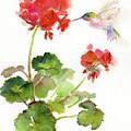 Hummingbird With Geranium by John Keeling