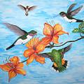 Hummingbirds by Vallee Johnson