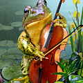 Humorous Scene Frog Playing Cello In Lily Pond by Regina Femrite
