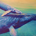 Humpback Whale And Calf by Kean Butterfield