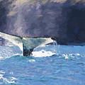 Humpback Whale Fluke by Sheila Smart Fine Art Photography