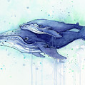 Humpback Whale Mom And Baby Watercolor by Olga Shvartsur