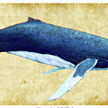 Humpback Whale Painting - Framed by Weston Westmoreland