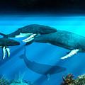 Humpback Whales by Daniel Eskridge