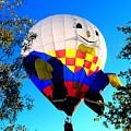 Humpty Dumpty Balloon by Adrienne Wilson
