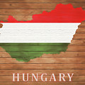 Hungary Rustic Map On Wood by Dan Sproul