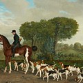 Hunter With A Pack Of Dogs by MotionAge Designs
