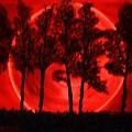 Hunters Moon by Lori Jacobus-Crawford