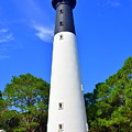 Hunting Island Lighthouse Beaufort Sc by Lisa Wooten