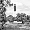 Hunting Island Lighthouse by Scott Hansen