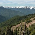 Hurricane Ridge View by Dan Sproul
