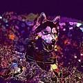Husky Dog Pet Canine Purebred  by PixBreak Art
