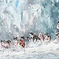 Huskies Race In Germany by Miki De Goodaboom