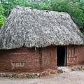 Hut Yucatan Mexico by Douglas Barnett
