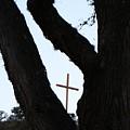 Hwy 87 Cross One by Ana Villaronga