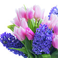 Hyacinths And Tulips  by Anastasy Yarmolovich