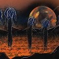 Hybrids by Jason Girard