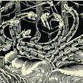 Hydra by Lance Miyamoto