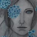 Hydrangea by Christine Howe