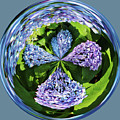 Hydrangea Cross by Cynthia Guinn